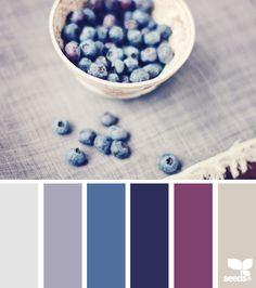 blueberry tones birthday tones