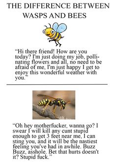 Oh now I feel guilty for spraying bees when I was younger :(