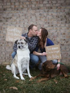 Lively Happenings: Our Biggest Announcment...A BABY BRATTON!!!  Postcard Pregnancy Announcement with the Dogs! (aka our the four legged babies!)