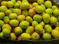 Mangos de Igueste de San Andrés