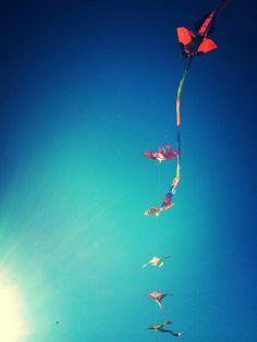 vliegeren aan zee