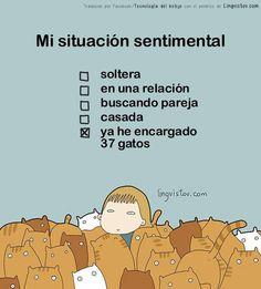 Mi situación sentimental http://www.gorditosenlucha.com/
