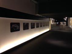 mostra del cinema 2013 ILSU