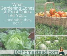 ... and what they don't. Plus, enjoy guides from gardeners all over North America.