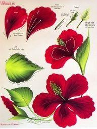 Donna Dewberry Free Patterns | donna dewberry free patterns | decorative painting and donna dewberry ...