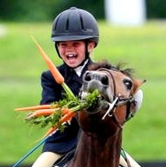 Dressage horse carrot treats. ♥ Pinned with gratitude by www.DressageWaikato.co.nz.