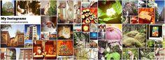 Instagram Photos 18.6.2012 by PauliinaMakela, via Flickr Baseball Cards, Photos, Painting, Instagram, Art, Art Background, Painting Art, Kunst, Paintings