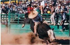 Mexican bullriding… the CRAZIEST sport ever!!!