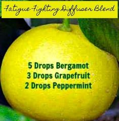 7 Popular Essential Oils for the Diffuser Essential Oil Diffuser Blends, Doterra Essential Oils, Doterra Diffuser, Young Living Oils, Young Living Essential Oils, Peppermint, Diffuser Recipes, Wellness, Remedies