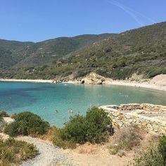 La baia di #laconella #elba vicino alla più famosa #lacona nello scatto di @lorenzomilani. Continuate a taggare le vostre foto con #isoladelbaapp il tag delle vostre vacanze all'#isoladelba. Visita http://ift.tt/1NHxzN3