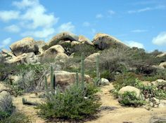 Aruba - middle of 9 mile island is desert.  One side is calm beaches, other side rough rocky shoreline.