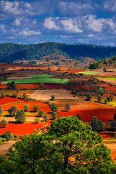 The gardener... Mother earth. Shan, Myanmar, Burma Such a beautiful sight