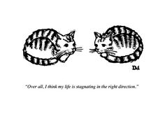 """""""Over all, I think my life is stagnating in the right direction"""" from The New Yorker"""
