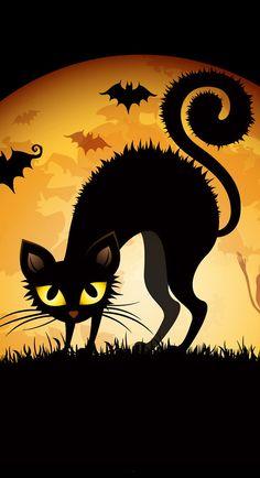 ♡✿ ☺ ✿ ☆✿ ☺ ✿♡ ...........black cat........... ♡✿ ☺ ✿ ☆✿ ☺ ✿♡