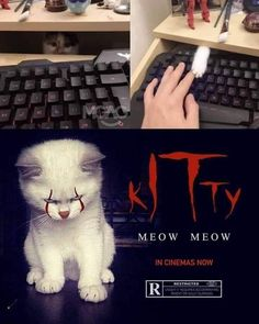 9gag Funny, Crazy Funny Memes, Really Funny Memes, Stupid Funny Memes, Funny Relatable Memes, Funny Work, Bruh Meme, Cute Cat Memes, Funny Jokes