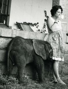 Dame Daphne Sheldrick…...just having tea with the the little guy