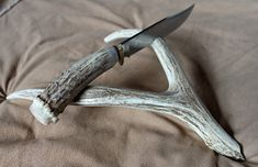 Hey, I found this really awesome Etsy listing at http://www.etsy.com/listing/160362391/deer-antler-knife-display-stand-only