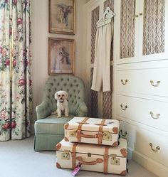 For several years , I have been writing about how chintz is back in bloom, and I could not have been more delighted when I saw The Glam Pad ...