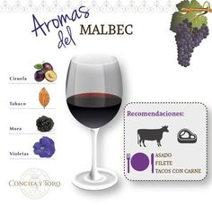 Aromas of Malbec Wine Party Appetizers, Wine Parties, Wine And Cheese Party, Wine Cheese, Vino Malbec, Wine Drinks, Alcoholic Drinks, Beverage, Chicken White Wine Sauce