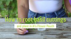 Grow your own herbs, like basil, in Al's Flower Pouch. You can do it from cuttings. It's easy. Take a look! #torontolovesplants #alsflowerpouch #afp #amahort #amasolutions #verticalgarden #verticalgardening #gardenideas #gardeninspiration #wallbag #flowerbag #plants #greenthumb #website #launch
