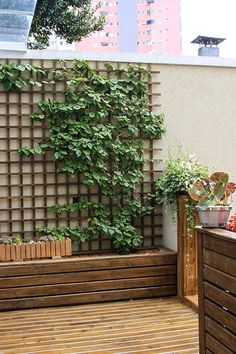 Varanda: Jardins translation missing: br. Terrace Garden, Indoor Garden, Outdoor Gardens, Walled Garden, Wood Gardens, Back Gardens, Small Gardens, Vertical Gardens, Backyard Patio