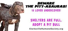On Sunday, October 16th, 2016 between the hours of 1:00pm and 4:30pm, the Humane Society of Clarksville-Montgomery County will hold Clarksville's 4th Annual Pit Bull Awareness Day in the parking lot of The Pet Food Center located at 2243 Lowes Drive, Clarksville, TN.