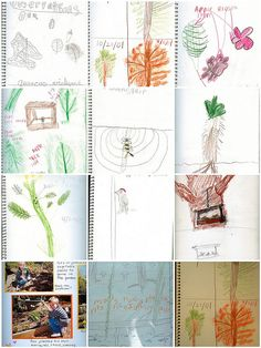 Start a nature journal--Nature Journal Mosaic by HarmonyArtMom, via Flickr