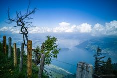 View of Lake Lucerne during our hike on the Rigi – the Queen of Mountains, in Central Switzerland. The Mont, Lucerne, Rocky Mountains, Switzerland, Hiking, Country, Travel, Queen, Tops