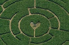 Great Green Color Aerial Photography that is made with cutting grass