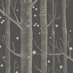 Woods & Stars 103/11053 - Whimsical - Cole & Son