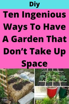 Small Space Gardening, Gardening Tips, Container Gardening, Veg Garden, Lawn And Garden, Garden Crafts, Garden Projects, Garden Ideas, Outdoor Gardens