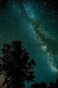 Perseid Meteor Shower  in Sonoma thk::::Sonoma is city in Sonoma Valley, Sonoma County, California