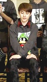 kyungsoo and his penguin