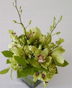 Green orchid centerpiece in cube vase.