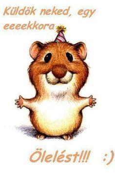 Funny Birthday Cards, Happy Birthday, Funny Animals, Cute Animals, Magnolia, Shrek, Cute Cartoon, Winnie The Pooh, Emoji