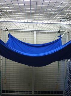 Google Image Result for http://starfishtherapies.files.wordpress.com/2012/02/swing6.jpg