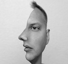 double images optical illusions - Google Search