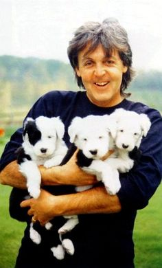 Paul McCartney with puppies!