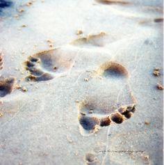 "Ooo the memories. ""Leaving Your Mark © Vicki Ferrari Photography"" by Vicki Ferrari Running Away From Home, I Love Someone, Beach Fun, Photo Art, Summertime, Ferrari, Yearbook Ideas, Memories, Footprints"