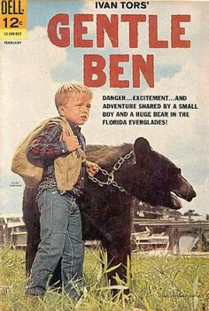 "GENTLE BEN, (TV Series Weaver told TV Guide in 1970 ""I liked him (Ben), but it was a cold relationship. Bears aren't like dogs and horses. Ben didn't know me from a bag of doughnuts."" I LOVED this TV show! I don't remember the comic book, though. Tv Vintage, Vintage Comics, Easy Listening, Gentle Ben, Gentle Giant, Cinema Tv, Vintage Television, Old Shows, My Childhood Memories"