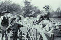 """What Every Farmer's Child Should Know"" Judging from these tips from the expectations of children between then and now have certainly changed quite a bit! How To Make Bed, Cool Things To Make, Old Things, Old Photos, Vintage Photos, Old Farmers Almanac, Farmers Market, Pioneer Life, Etiquette And Manners"