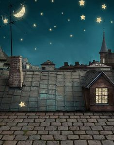 New Arrival Photography Backdrops Fundo Night Sky Moon Roof Photo Backgrounds for Children Studio Props