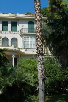 Bordighera (IM) - Villa dell'Esedra