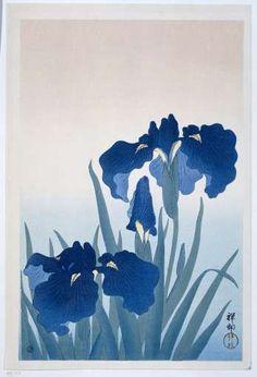 Irises, Ohara Koson, 1925 - 1936 - floral-japan-Collected Works of Milind Sonavane - All Rijksstudio's - Rijksstudio - Rijksmuseum