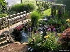 Paisagismo e jardinagem                                                       …