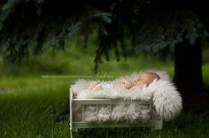 gorgeous newborn photo