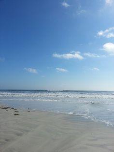 Loving the Ocean