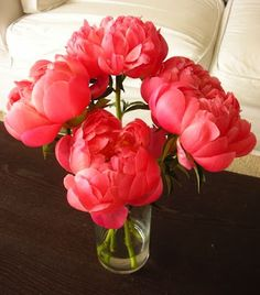 Coral peonies.... I think these are my new favorite flower