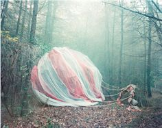 """""""And Then…"""" is a collaborative photography project between photographer Jo Metson Scott and artist/set designer Nicola Yeoman. Each photograph depicts an open narrative set in a wooded scene."""