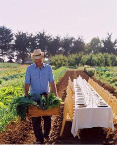 Farm to table. Table to farm.